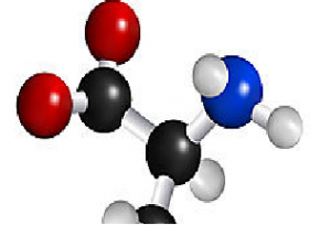 Amino Acids and you