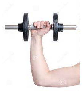 Explosive reps vs Slow controlled Reps